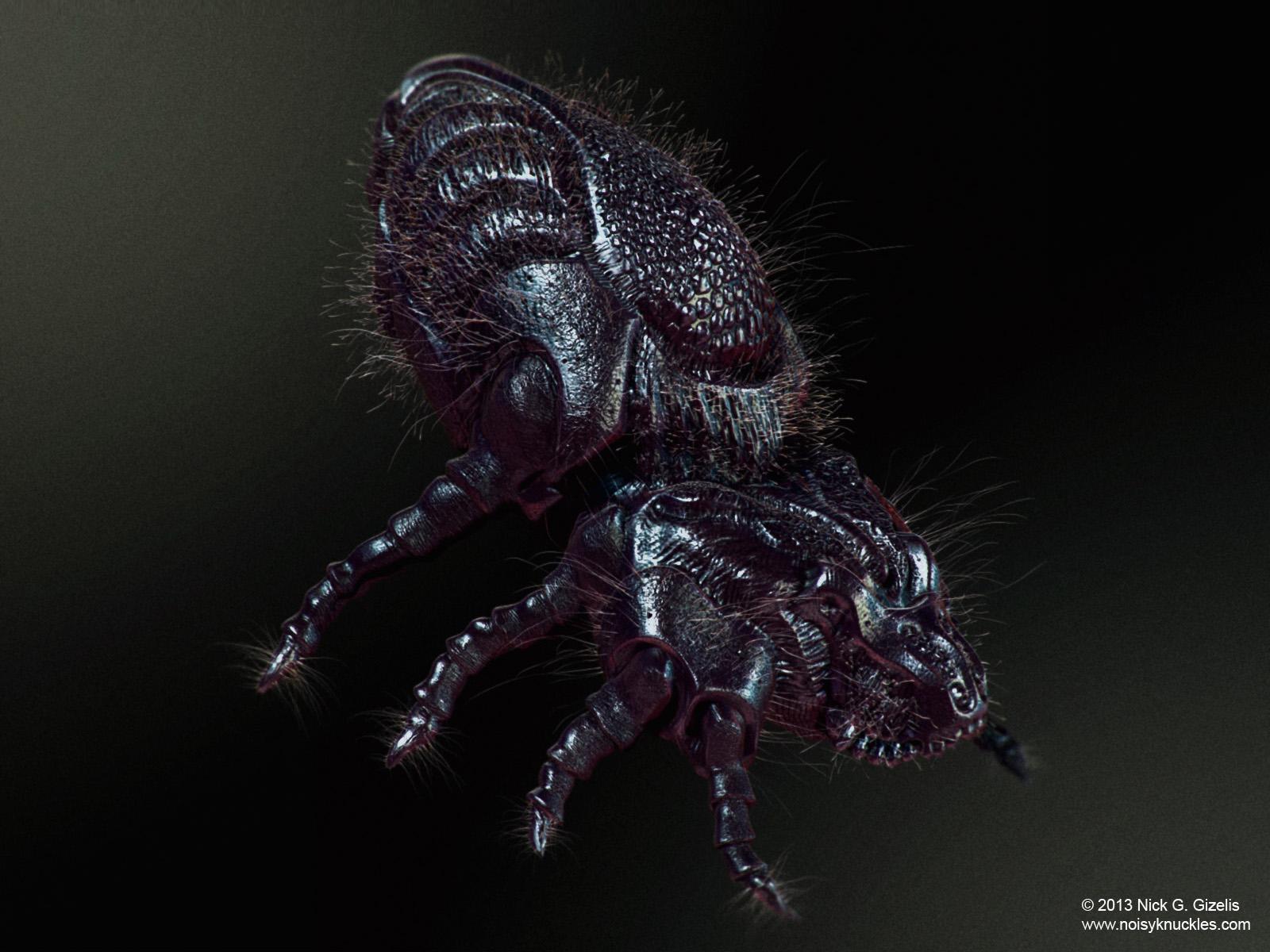 nick-gizelis-micro-dustmite-01